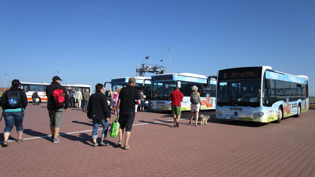 Busse am Fahrterminal auf Norderney