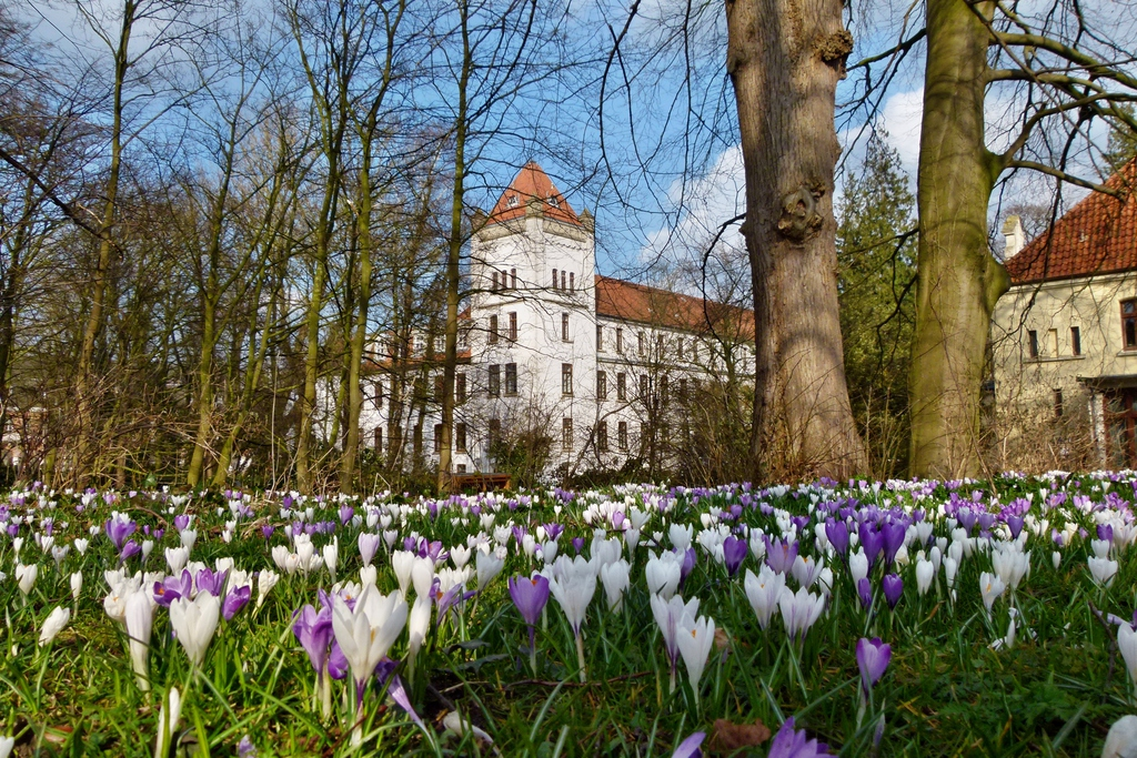 147_Auricher_Schloss_im_Fruehling.1024