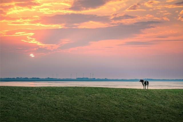 Küstenfahrt Ostfriesland