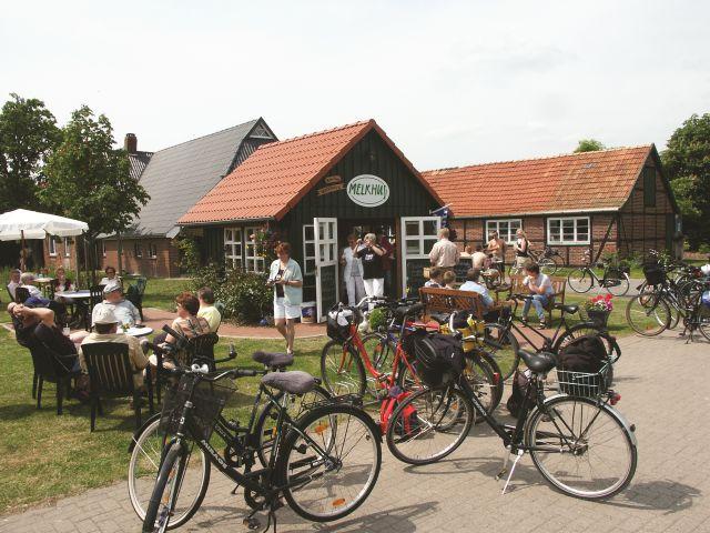 Radfahrer-Gruppe im Melkhus in der Wesermarsch